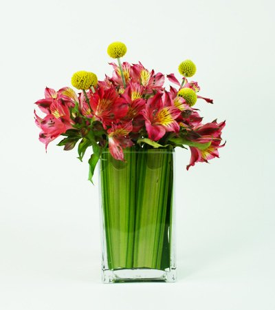 Alstromeria Pop Flower Arrangement