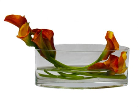 Calla Hammock Flower Arrangement
