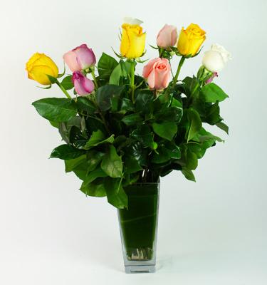 1 Dozen Mixed Colored Roses