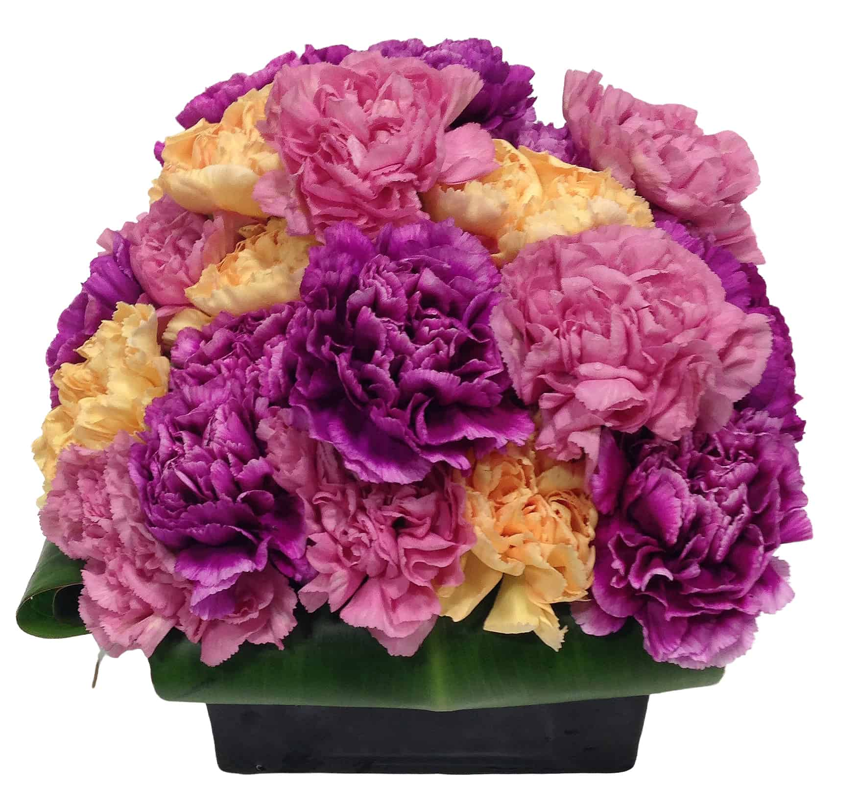 Contemporary Carnation Box Flower Arrangement