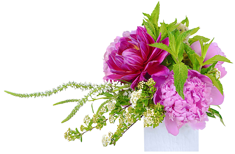 Feathered Peony Flower Arrangement