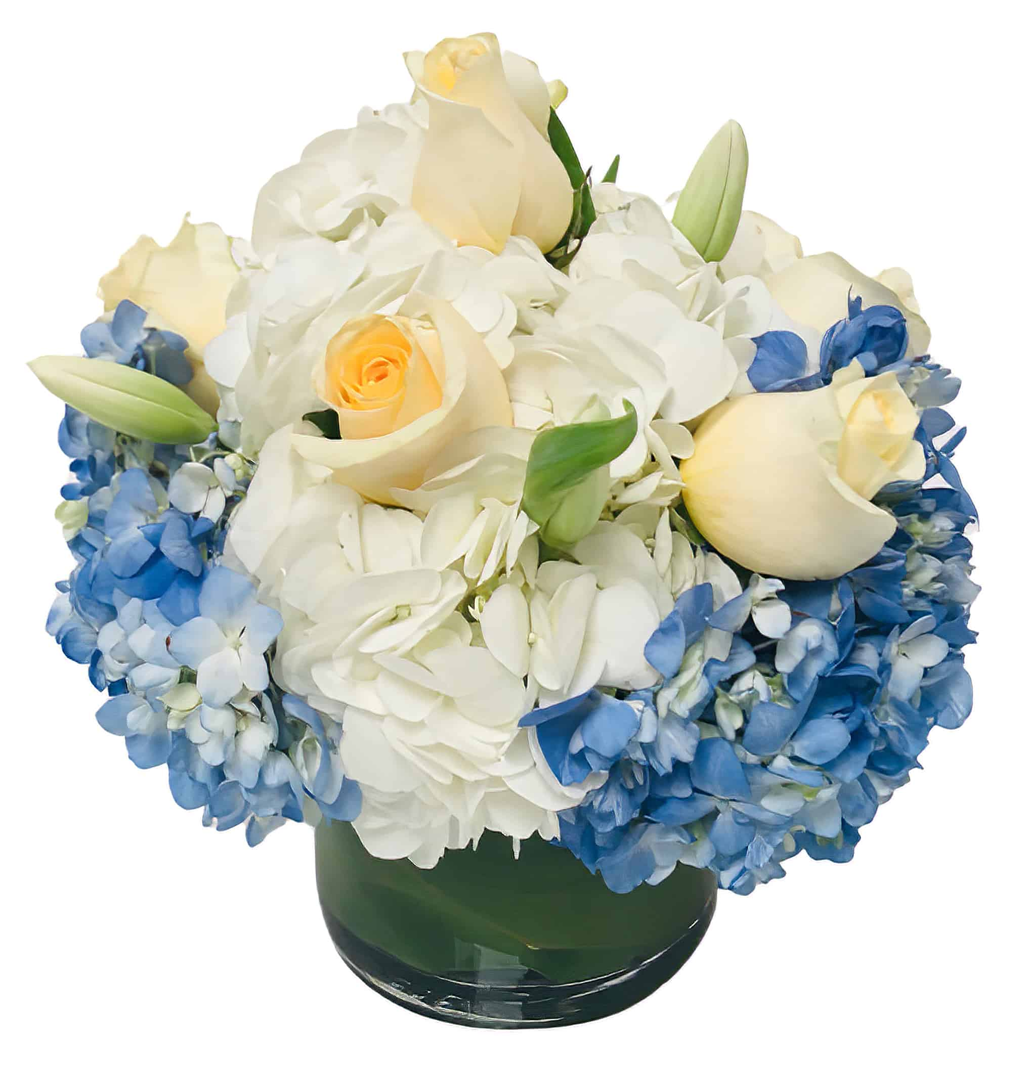 Sea Bubbles Flower Arrangement
