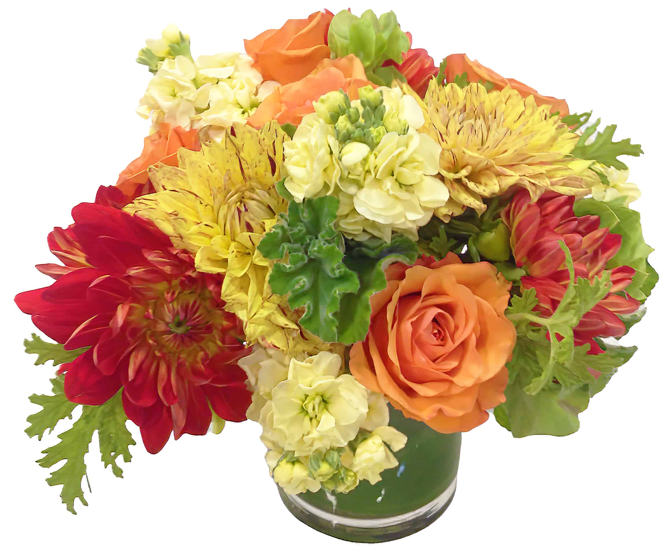 Fama Fiori Arrangement