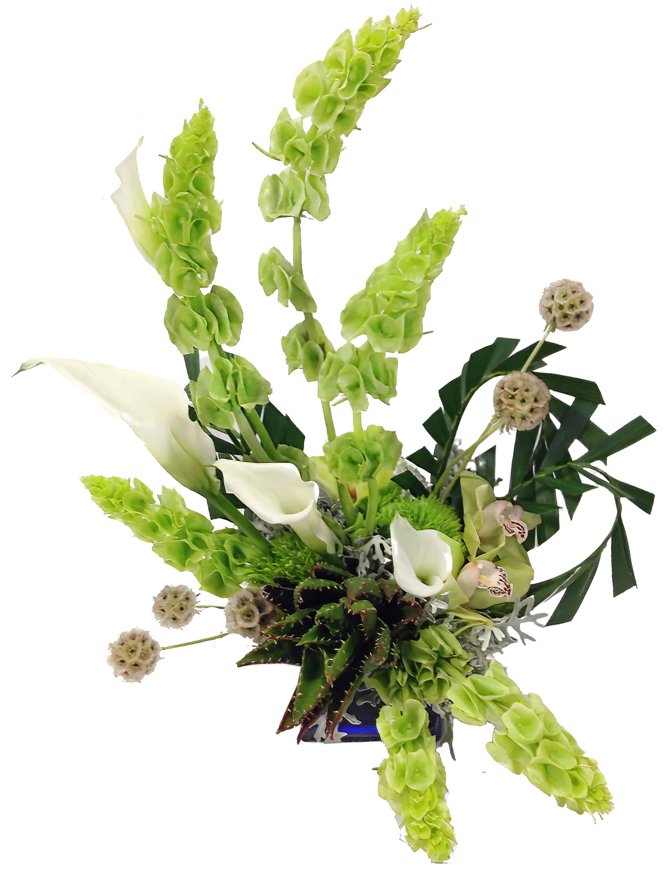 Spirals Floral Arrangement