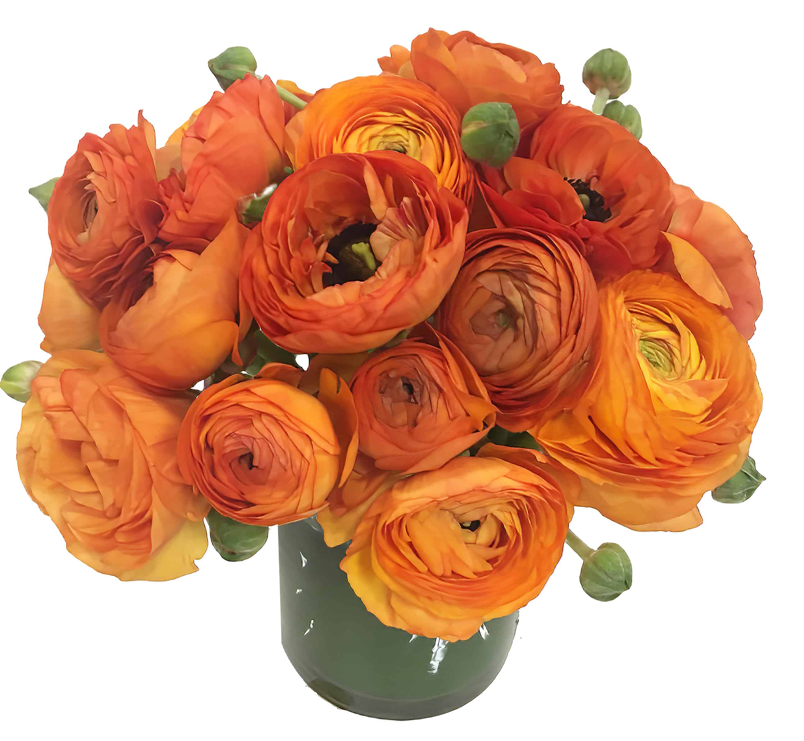 Ranunculus Sun Flower Arrangement