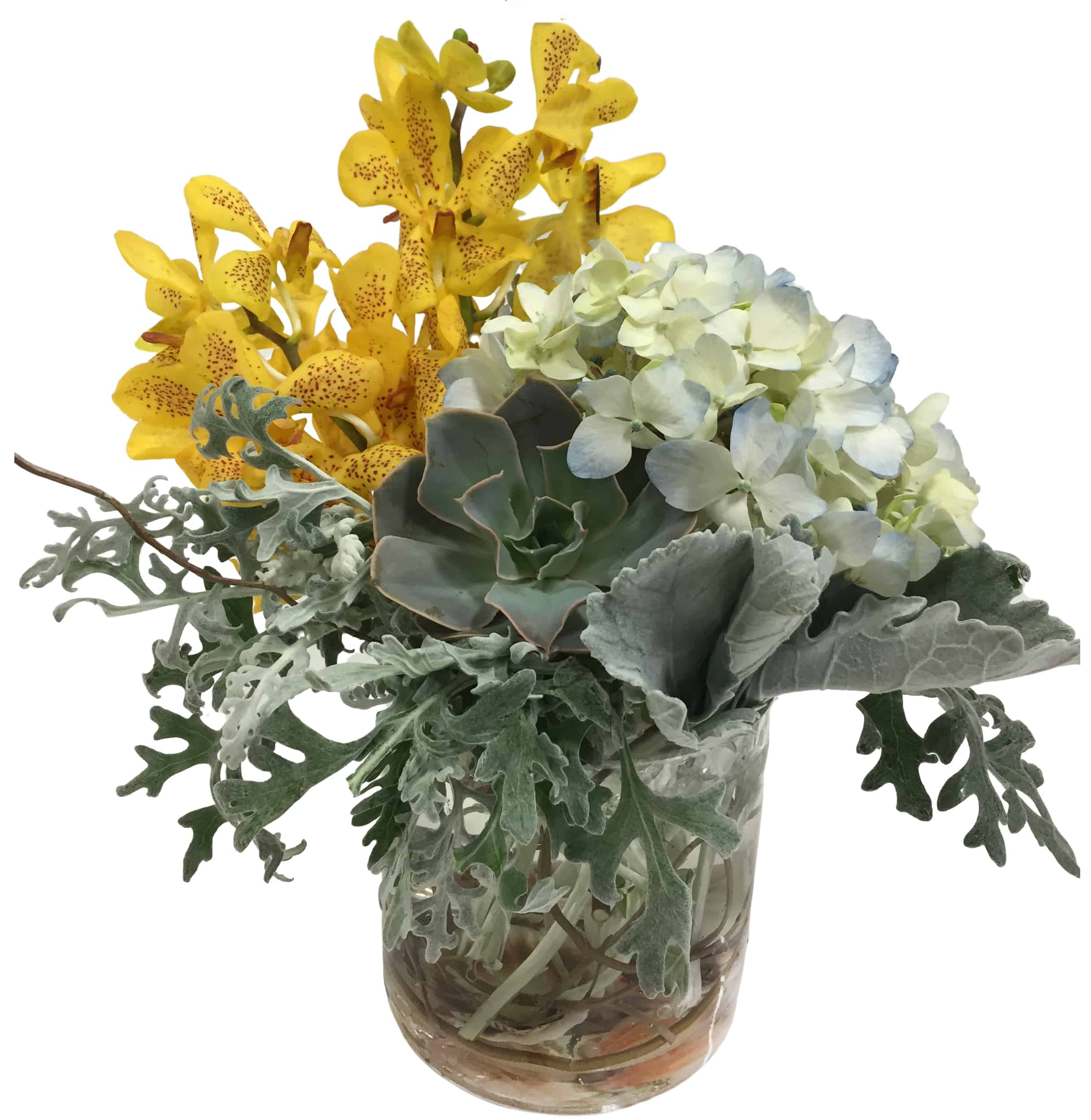 Succulent Seashells Flower Arrangement