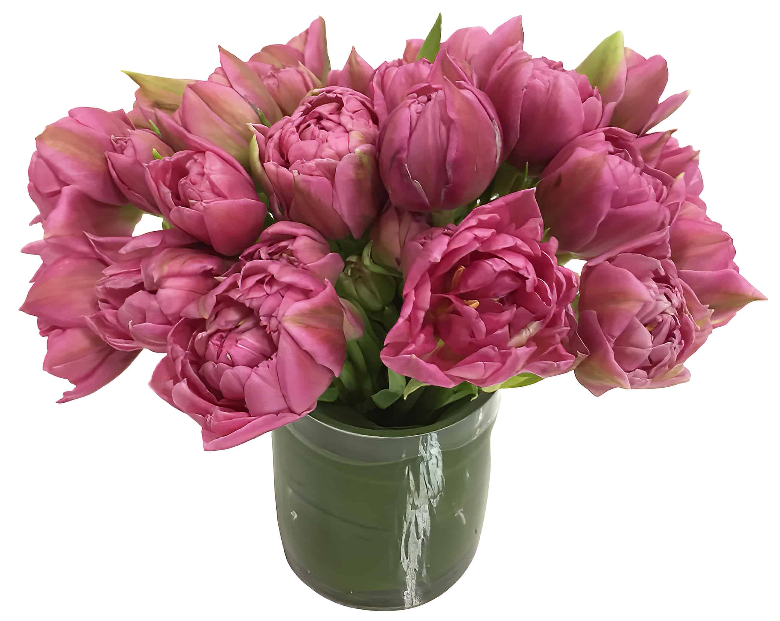 Double Tulip Fantasy Arrangement