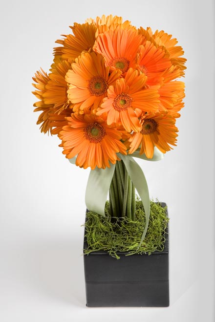 European Gerbera Topiary Flower Arrangement