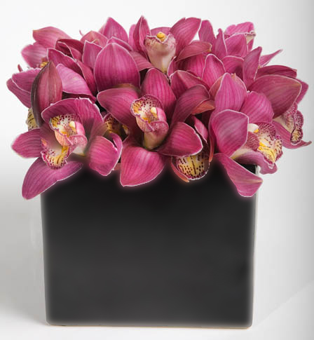 Simply Cymbidium Flower Arrangement