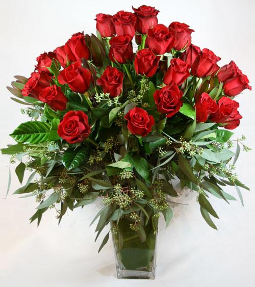 3 Dozen Flowers - Valentine Famoso Roses