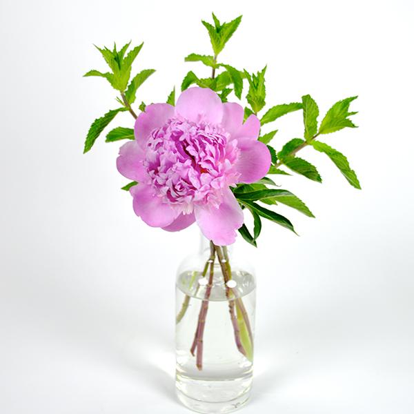 Message in a Bottle Flower Arrangement