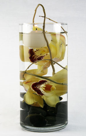 Vodka Cymbidium Deluxe