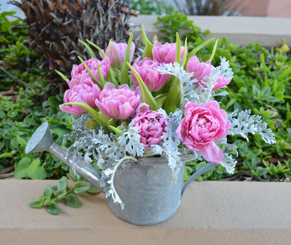 Tulip Can Flower Arrangement $52 San Francisco Florist