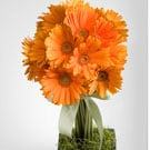 European Gerbera Topiary Floral Arrangement