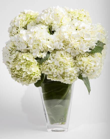 Hydrangea paraded flower arrangement san