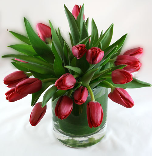 Tulip Cascade Flower Arrangement