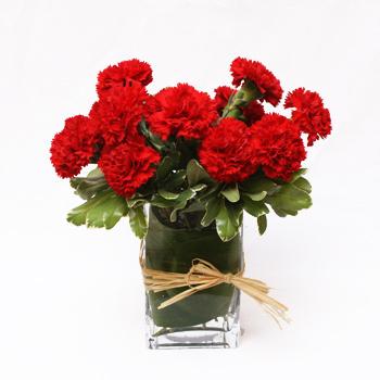 Carnation Flower Arrangement