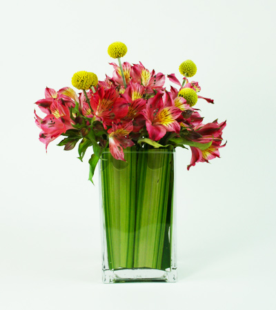 Alstromeria Pop Floral Arrangement