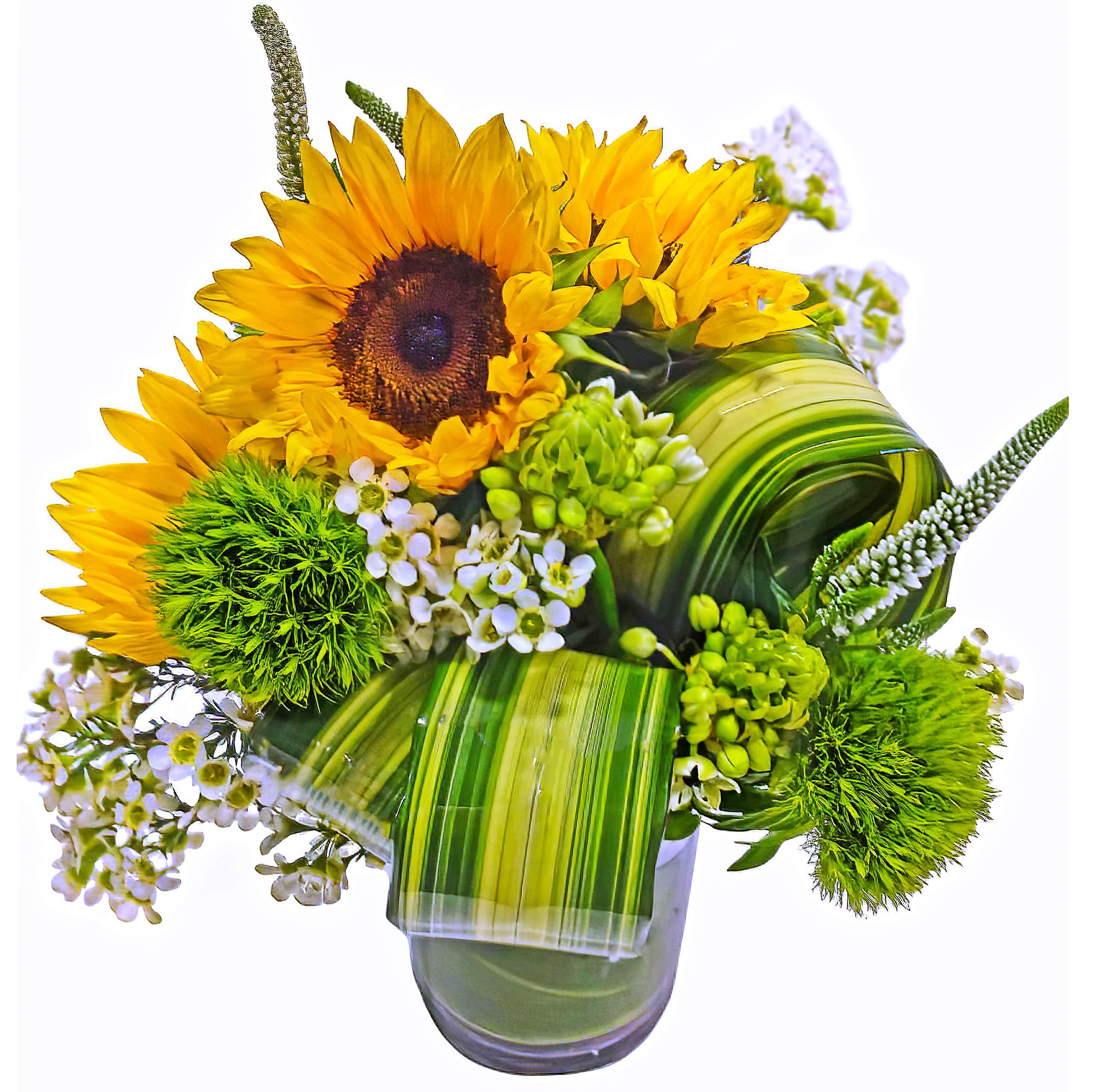Striped Sunflowers Floral Arrangement