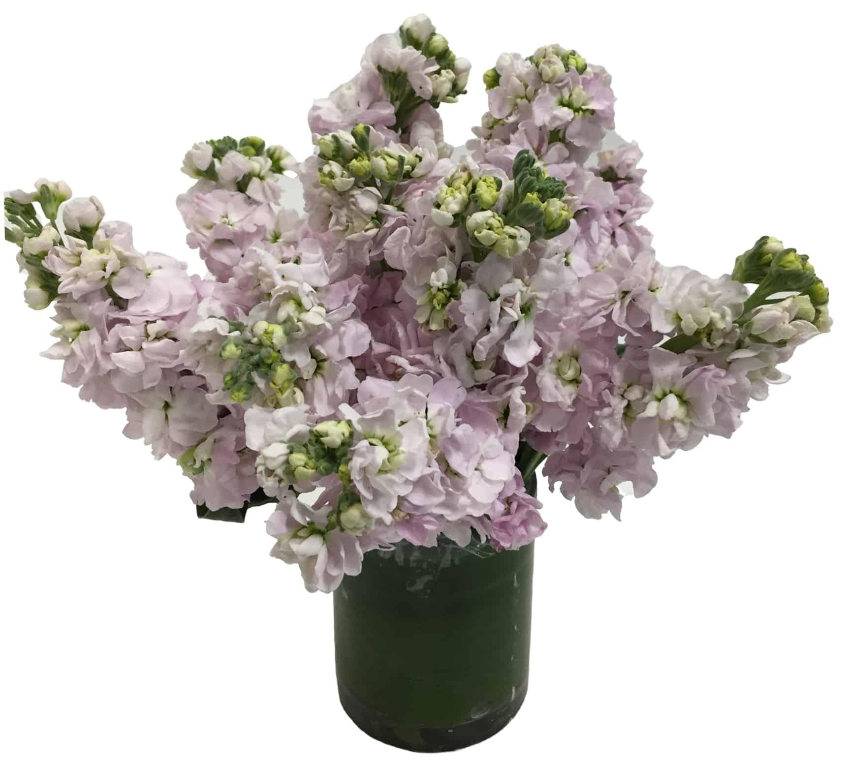 Simply Light Flower Arrangement
