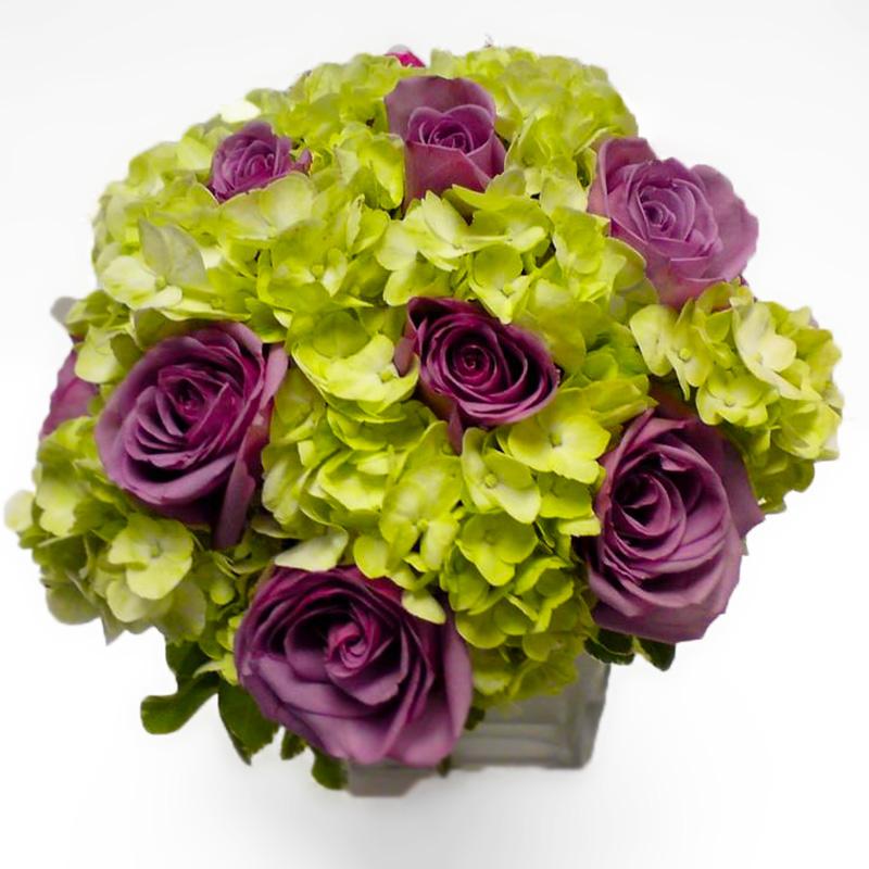 Hydrangea and Roses
