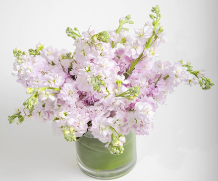 Simply Light Flower Arrangement | San Francisco Florist Since 1871 Free Bay Area and San Francisco Flower Delivery