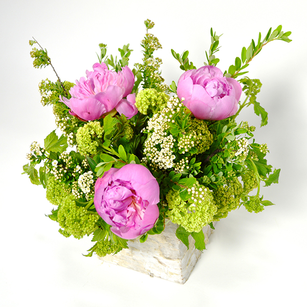 Birch Box Peonies Flower Arrangement | San Francisco Florist Since 1871 Free Bay Area and San Francisco Flower Delivery